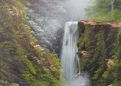 Waterfall in the Woods